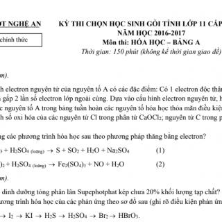 Đề thi học sinh giỏi Hóa học 11 tỉnh Nghệ An