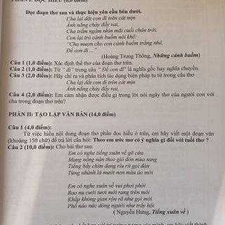 ĐỀ THI HỌC SINH GIỎI MÔN NGỮ VĂN LỚP 6 CÓ ĐÁP ÁN