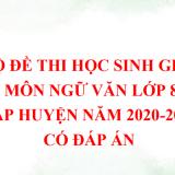 Bộ đề thi học sinh giỏi môn Ngữ văn lớp 8 cấp huyện năm 2020-2021 có đáp án